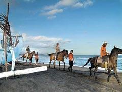 Horse ride4