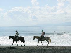 Horse ride6