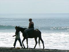 Horse ride5