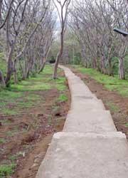 西部国立公園2
