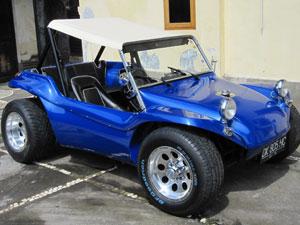 Buggy6
