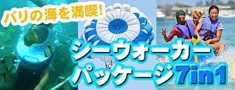シーウォーカー・パッケージ7in1 バリ ドルフィン社