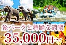 象パークを観光!エレファントパーク満喫+舞踊鑑賞