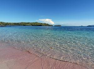 コモド島9