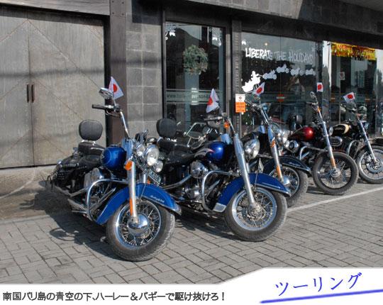 Bali Tour Harley & Buggy Touring1