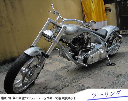 Bali Tour Harley & Buggy Touring5