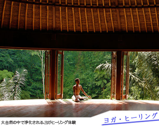 Bali Tour Sightseeing Yoga & Healing1