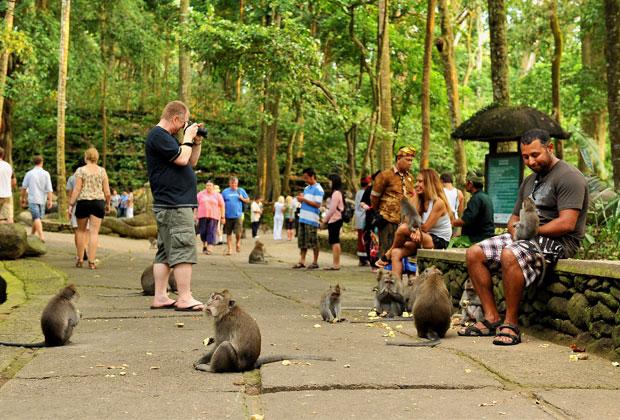 団体・学生旅行におすすめ!バリ島ターゲットのおすすめツアー