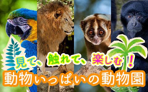 バリ島 バリ動物園(バリズー)