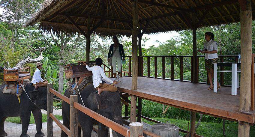 インドネシア固有種スマトラ象に乗ります