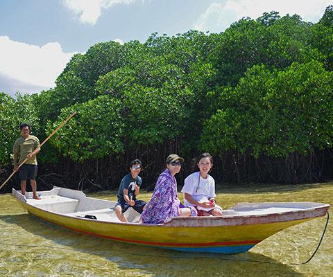 レンボンガン島 マングローブ林自然探検