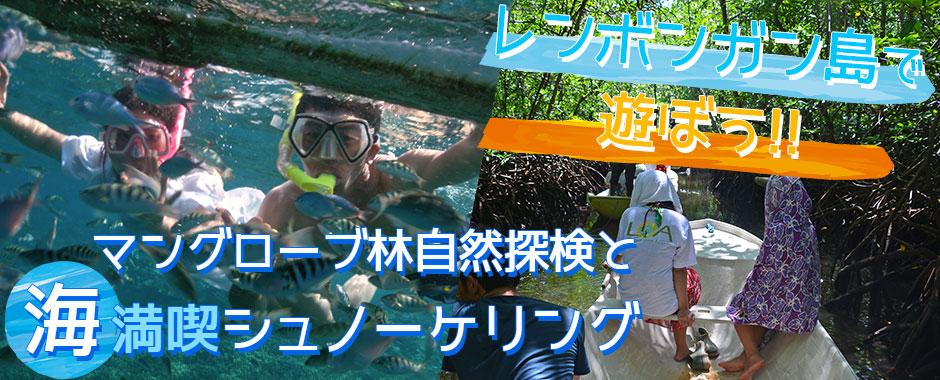 バリ島 マングローブ林とサンゴ礁とお魚さんがお出迎え「シュノーケリング」ツアー
