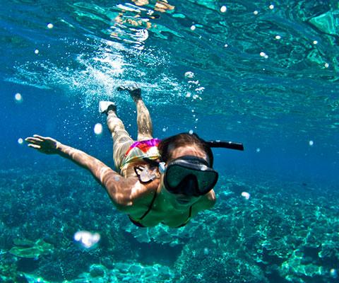 バリ島だからできるシュノーケリングツアーです