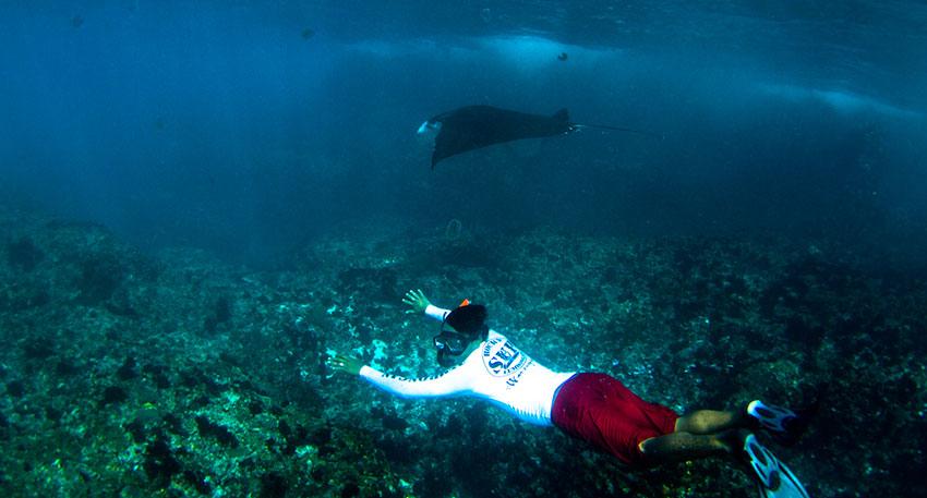 透明度が高く人気のレンボンガン島の海