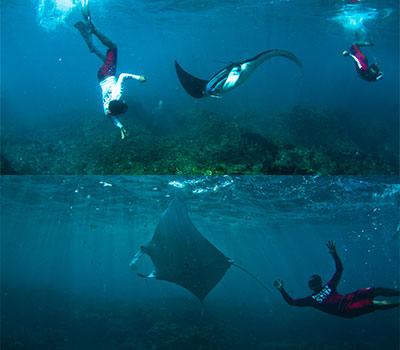 バリ島 レンボンガン島 画像