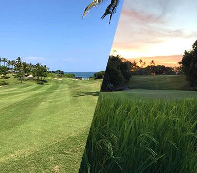 バリ島 ニルワナ ゴルフ クラブ 画像