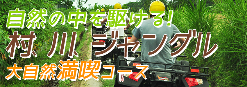 バリ島 Pertiwi Quad Adventure ATVライド 特徴