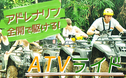 バリ島 Pertiwi Quad Adventure ATVライド