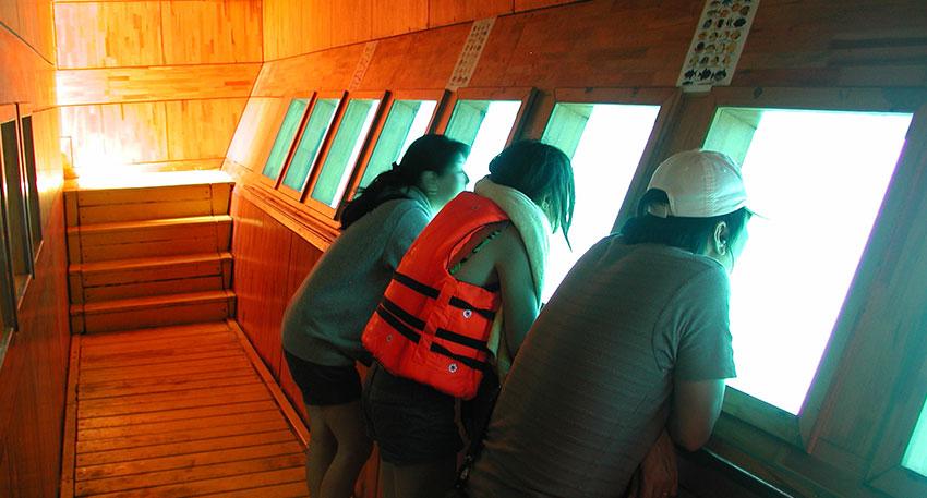 海の中をガラス越しに見ることが出来る水中回廊