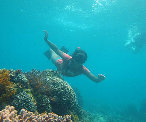 海の中を楽しめるシュノーケリング