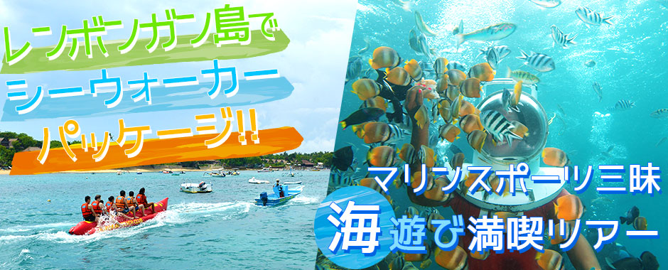 バリ島 トレジャーハント with シーウォーカー