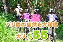 バリ島の自然を満喫ソベック サイクリング