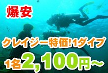 クレイジー特価!ヌサドゥアde体験ダイビング(バリ ドルフィン社)