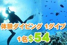 バリ島 観光激安ヌサドゥアde体験ダイビング(バリ コーラル社)