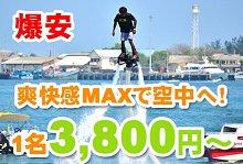 バリ島 観光爽快感MAX!フライボード