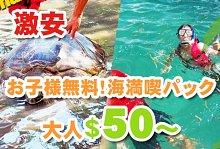 お子様無料!野外学習 亀の島とシュノーケル BASUKA社