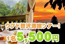 バリ島 観光いたれりつくせり ウブドショッピング・カスケード・タナロット贅沢ツアー
