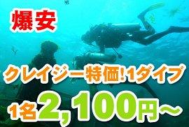 バリ島の海に潜る!激安体験ダイビング