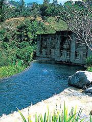 バリ島スパ ガーデン内プール