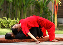 Tanah Merah Spa 5/Thai Massage