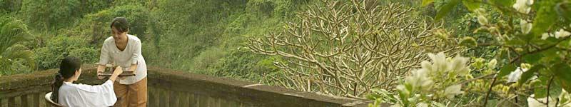 バリ島スパ 自然に囲まれています