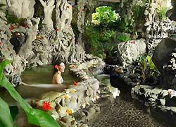 バリ島スパ 大自然の中のバス