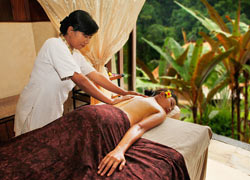 Yoga & Balinese Massage & Healthy Meal