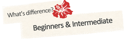 differences between beginners course and intermediate course