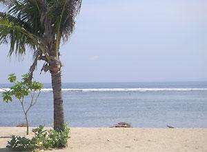スリランカ1