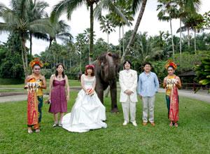 Bali WeddingPW-08 3