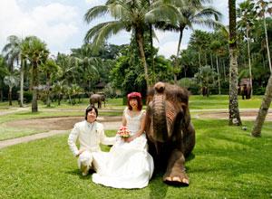 Bali WeddingPW-08 4