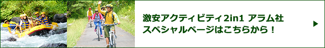 激安2in1パッケージ アラムスペシャルページバナー
