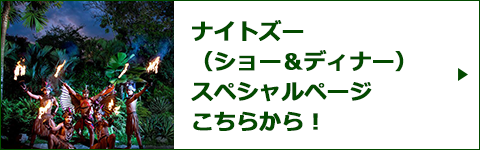 ナイトズー(ショー&ディナー)スペシャルページバナー