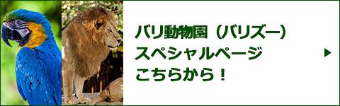 バリ動物園(バリズー)スペシャルページバナー