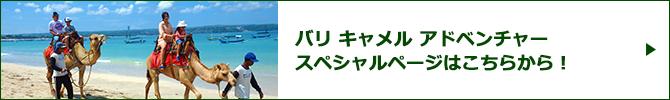 バリ キャメル アドベンチャースペシャルページバナー