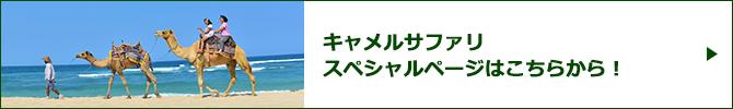 キャメルサファリスペシャルページバナー