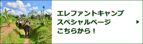 エレファント・キャンプスペシャルページバナー