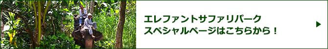 エレファント・サファリパークスペシャルページバナー