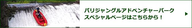 バリジャングルアドベンチャーパークスペシャルページバナー