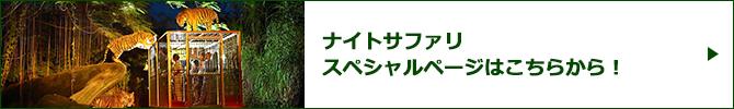 ナイトサファリスペシャルページバナー
